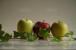 りんごたちの写真・画像素材[1668858]