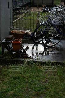 雨上がりの写真・画像素材[3142880]