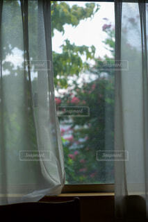 レースのカーテンの写真・画像素材[3652354]