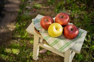 りんごの写真・画像素材[3958516]