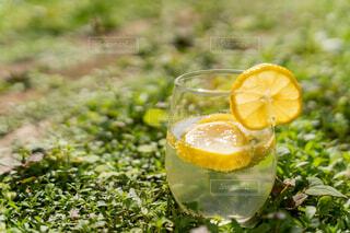 レモンの炭酸ジュースの写真・画像素材[4577382]