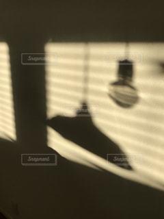 夕日の写真・画像素材[485369]