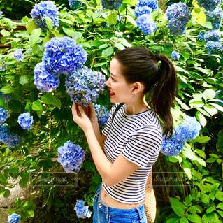 紫陽花とパシャりの写真・画像素材[1275878]