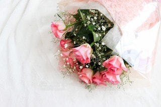 花のクローズアップの写真・画像素材[2553115]