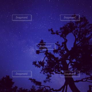 夜景の写真・画像素材[481866]