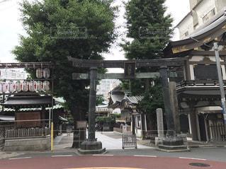 湯島天神 - No.487225
