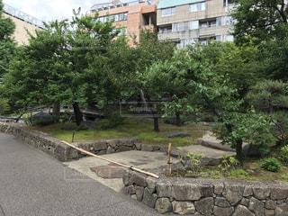 湯島天神 - No.487247