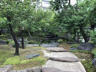 湯島天神 - No.487248