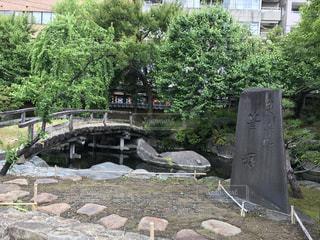 湯島天神 - No.487249