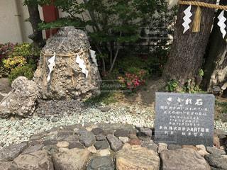 神田明神の写真・画像素材[487251]
