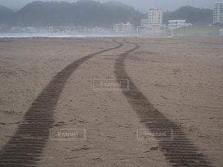 浜辺に続く轍の写真・画像素材[1479053]