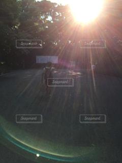 屋外の写真・画像素材[489473]