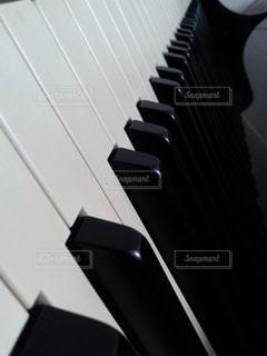 白黒 - No.486121