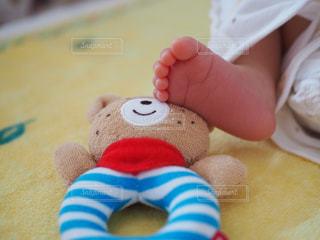 赤ちゃんの写真・画像素材[1303005]