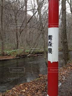 奥入瀬渓流の写真・画像素材[2225386]