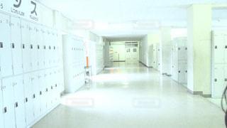 思い出の校舎の写真・画像素材[927670]