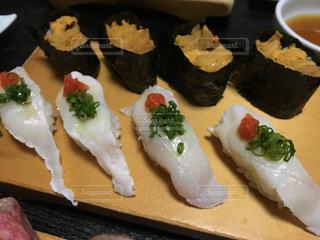 No.548534 魚