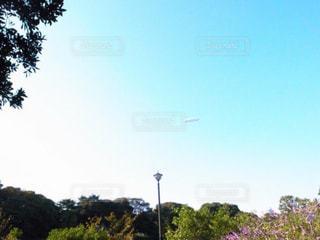 空の写真・画像素材[548898]
