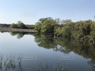 風景の写真・画像素材[485245]