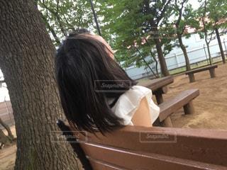 公園の写真・画像素材[516775]