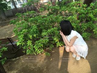 庭園に坐っていた男の写真・画像素材[1063137]