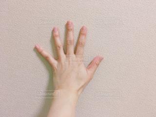 女性の手の写真・画像素材[710299]