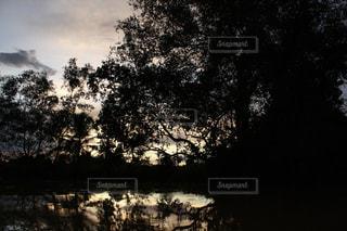 自然の写真・画像素材[488645]