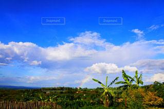 アフリカ・ルワンダで見た二重の虹の写真・画像素材[964545]