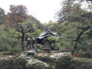 #京都 #京都旅行 #冬の京都 #岡崎神社 #出産祈願 #雪 #雪の京都 #日本の景色 #冬の絶景の写真・画像素材[488413]