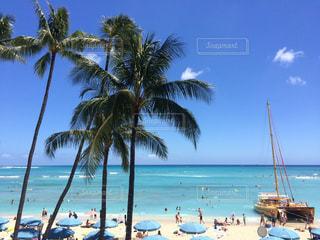 #Hawaii #waikiki #ハワイ #ハワイ旅行 #ワイキキ #ビーチ #海 #常夏 #ハワイの海 #夏の写真・画像素材[488848]
