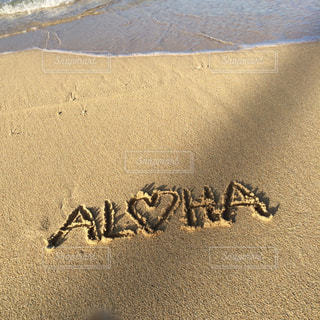 #aloha #beach #hawaii #waikiki #ハワイ #ワイキキ #アロハ #砂浜 #常夏 #浜辺 #ハワイの海 #ハワイ旅行の写真・画像素材[488852]