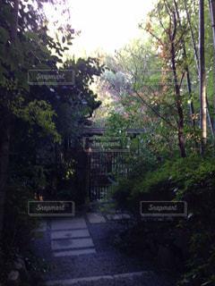 京都の写真・画像素材[489320]
