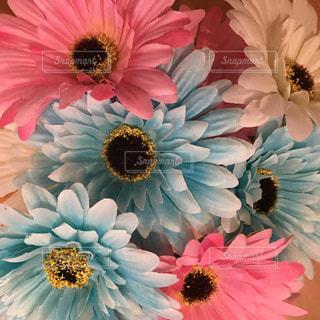 花の写真・画像素材[489778]