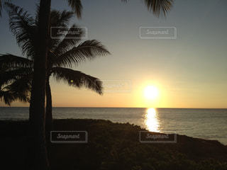 ハワイ・HAWAII・KO OLINA・夕日・夕陽 - No.491563