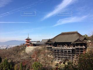 清水寺の写真・画像素材[491718]
