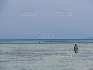 美ら海の写真・画像素材[491913]