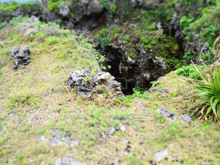 okinawaの写真・画像素材[492570]
