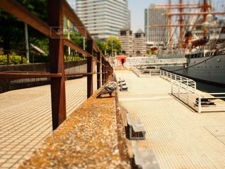 Yokohamaの写真・画像素材[492575]