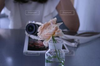 カフェの写真・画像素材[541793]