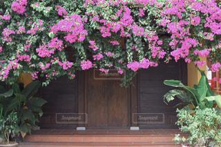 素敵な扉の写真・画像素材[2189459]