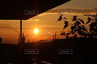 夕日の写真・画像素材[532279]