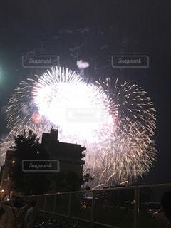 花火の写真・画像素材[641460]