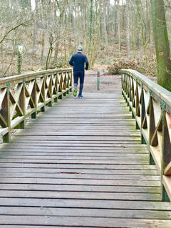 冬の森の中をジョギングする主人の写真・画像素材[987216]