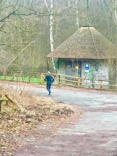 森の中のジョギングの写真・画像素材[987217]