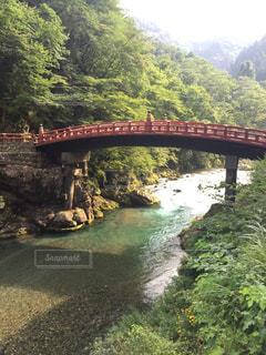 橋の写真・画像素材[521677]