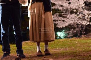 桜の写真・画像素材[555885]