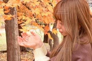 木の隣に立っている女性の写真・画像素材[2768106]