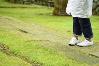 草の中を歩く人の写真・画像素材[2779771]