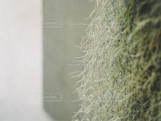 自然 - No.500377