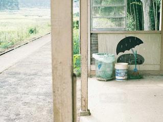 木製のドアの上に座っている猫の写真・画像素材[909248]